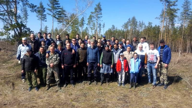 По инициативе РДУМСО прошла экологическая акция, приуроченная к Всероссийскому дню посадки леса